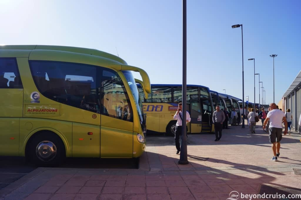 Malaga Cruise Port - Excursion coaches ready